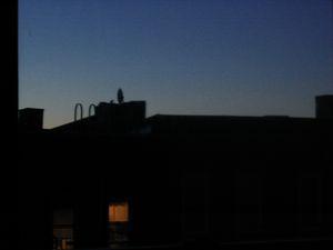 22407-sunsets-006.jpg