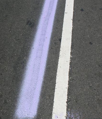 pride-day-2007-016a.jpg