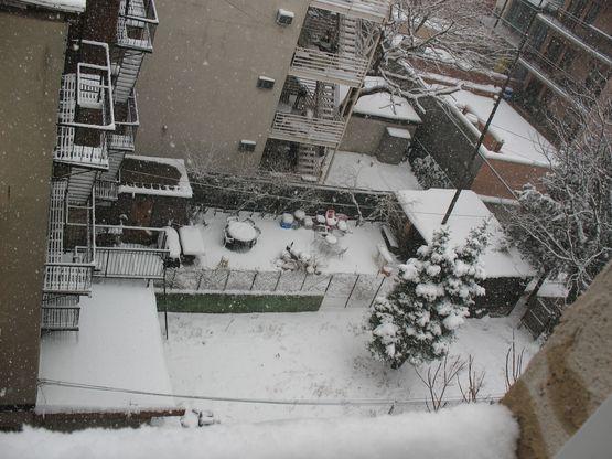 22208-hoboken-snow-004a.jpg
