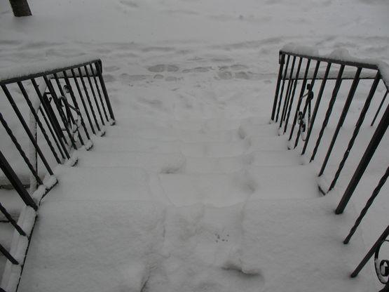 22208-hoboken-snow-005a.jpg