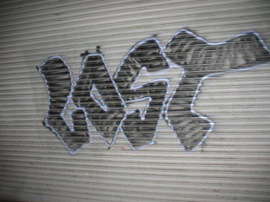121508-nyc-si-se-puede-0821