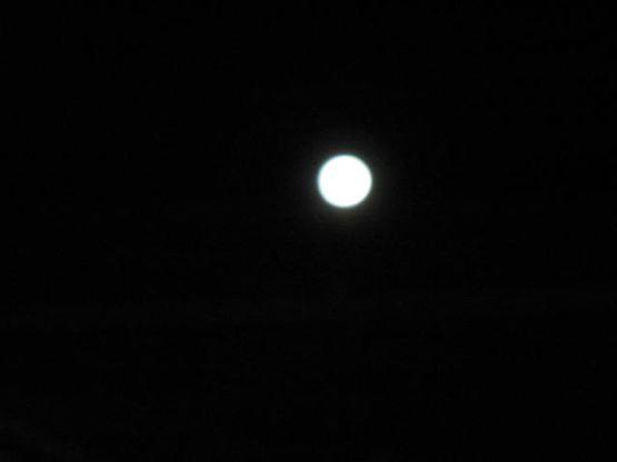 Bronx Moon