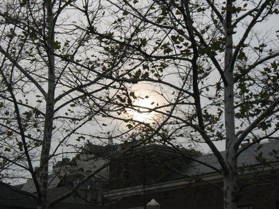 11.10.09 Sun