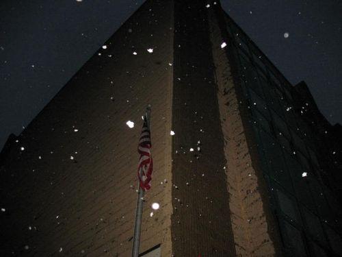 12.5.09 Snow 003