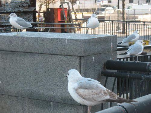 1.23.10 Hoboken 005