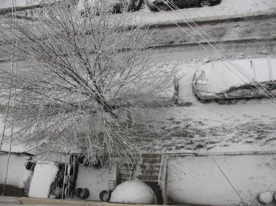 2.25.10 SNowstorm hoboken2 005