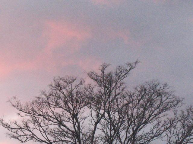 1.22.2013 Hoboken Sky 002